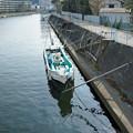 写真: 江ノ電を歩く13