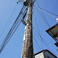 写真: 江ノ電を歩く15