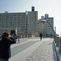 写真: 江ノ電を歩く22