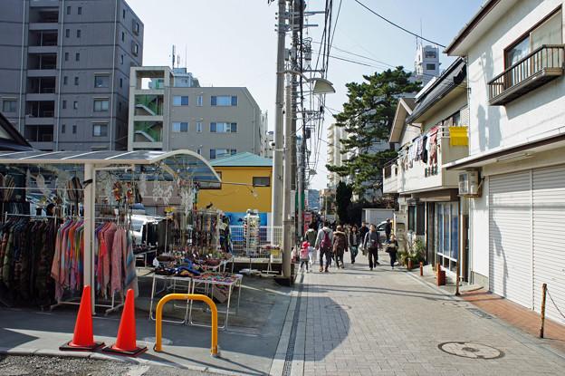 江ノ電を歩く28
