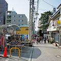写真: 江ノ電を歩く28