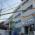 写真: 江ノ電を歩く36