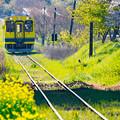 黄色い列車がやって来た