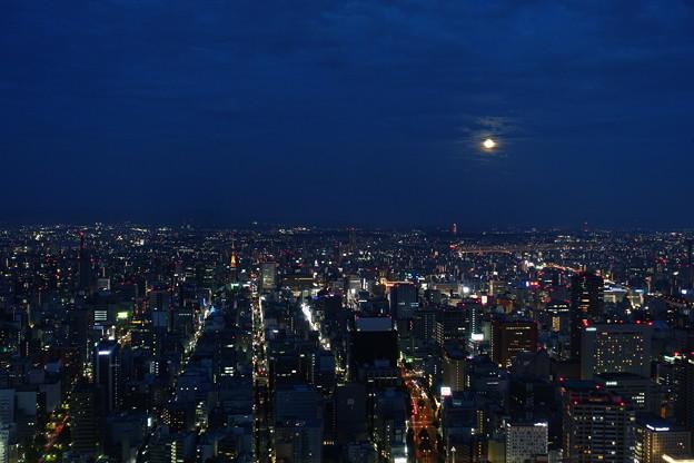 都会の名月