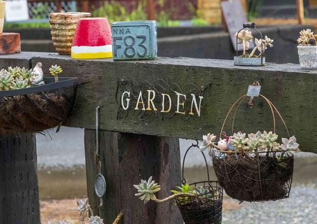 これが私の庭