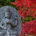 Photos: 洞川 龍泉寺