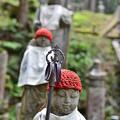 Photos: 奥の院参道