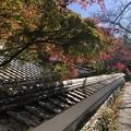 Photos: 再会の奈良を訪ねて