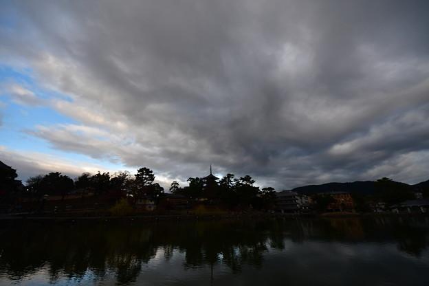 冬の猿沢池