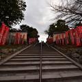 Photos: 冬に向かう階段