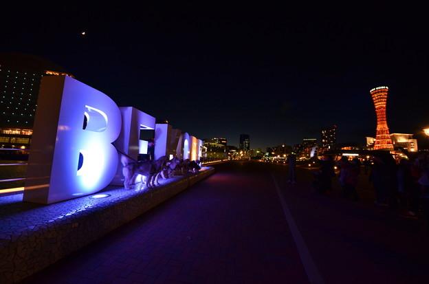 夜のメリケンパーク