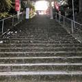 Photos: 長い階段