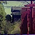 1991年 秋 臼杵