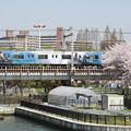 Photos: 大阪環状線 201系 ハリーポッターラッピング