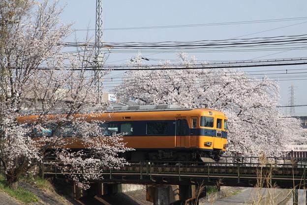 近鉄12400系×桜2018年