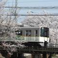 近鉄5820系×桜2018年