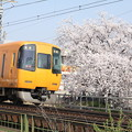 写真: 近鉄22600系×桜2018年