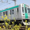 写真: 京都市交通局10系×菜の花
