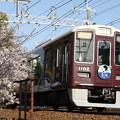 阪急1000系×桜2018年