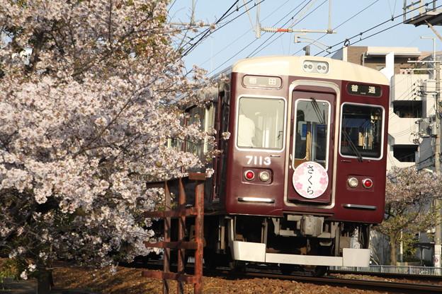 阪急7000系×桜2018年