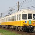 琴電1070形+1200形(綾川町ラッピング)