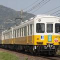 Photos: 琴電1070形+1200形(綾川町ラッピング)