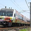 写真: 2000系 特急南風(アンパンマン列車)
