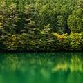 Photos: 南伊奈ヶ湖