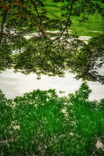 写真: 南伊奈ヶ湖