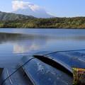 写真: 西湖の富士山