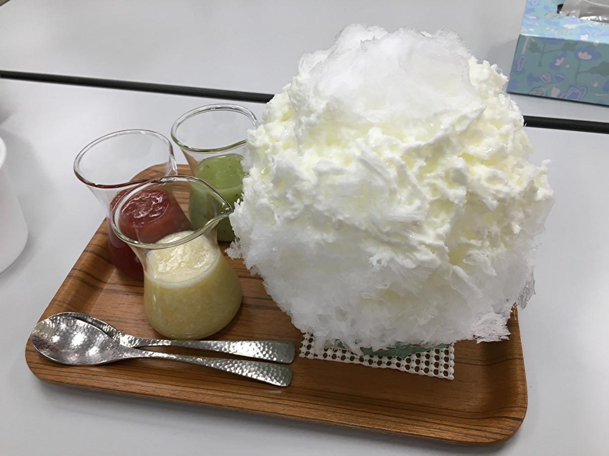 埜庵の氷全景