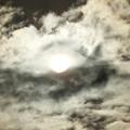 Photos: EOS_8000D_21-01-01_0022