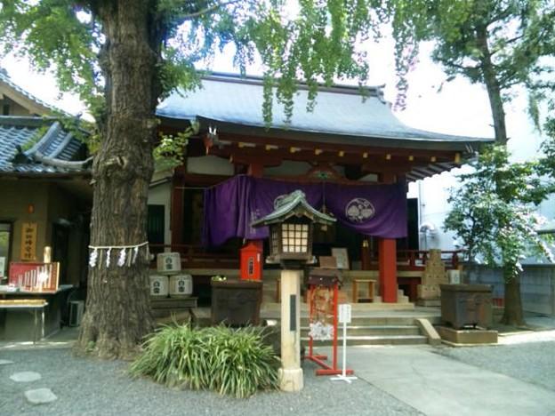 日本橋日枝神社。