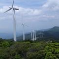 写真: 大川原高原 風車