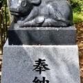 Photos: 2014_0419_132252_長岡天神