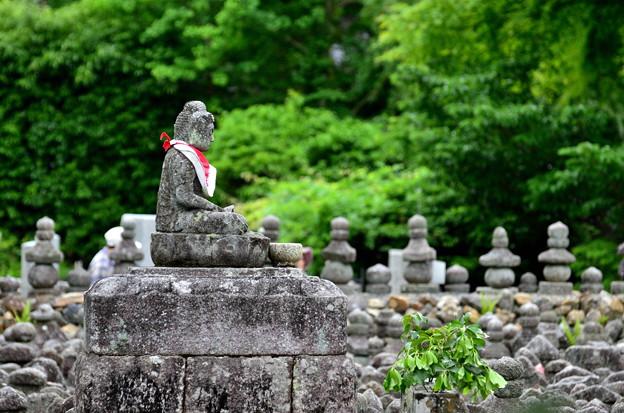 2018_0519_141838 化野念仏寺