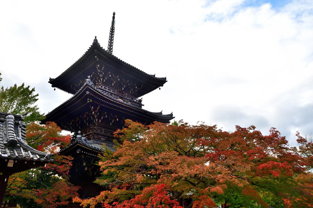 Photos: 2018_1104_143444 真如堂の三重塔