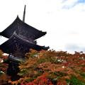 写真: 2018_1104_143444 真如堂の三重塔