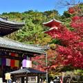 2018_1118_122121 今熊野観音寺