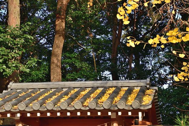 2018_1202_151614 河合神社