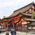 Photos: 2019_0203_115951 八坂神社本殿