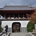 Photos: 2019_0210_130123R 山門