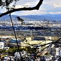 2019_0103_142341 男山からの展望