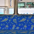 2019_0623_145500 座席には魚が泳いでいます。