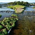 Photos: 2019_0915_163923 賀茂川+高野川=鴨川