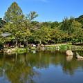 2019_1006_133918 円山公園