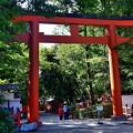 2019_1006_134300 八坂神社