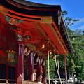 2019_1006_134707 八坂神社