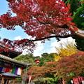 2019_1116_144023 今熊野観音寺