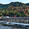Photos: 2019_1122_164322 渡月橋と嵐山